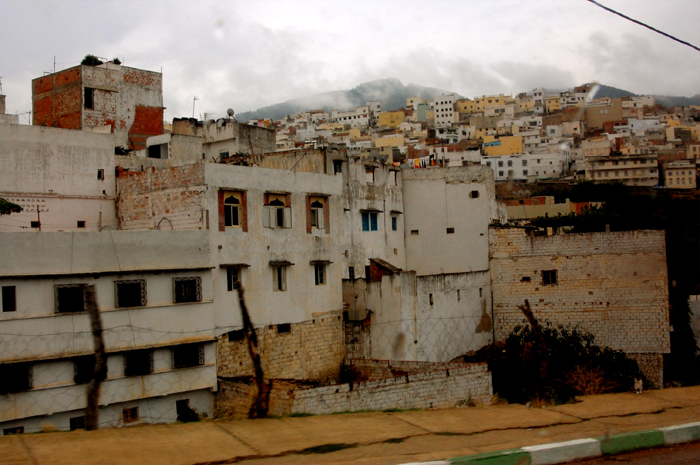 moulay-dense-700